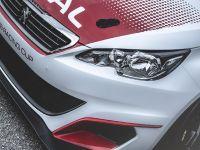 2016 Peugeot 308 Racing Cup , 17 of 18
