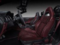 2016 Vilner Alfa Spider Fibra de Carbono Rosso, 6 of 9