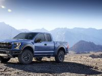 2017 Ford F-150 Raptor, 5 of 11