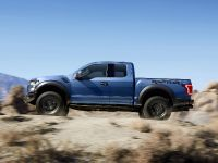 2017 Ford F-150 Raptor, 7 of 11
