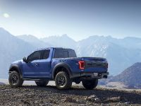 2017 Ford F-150 Raptor, 8 of 11