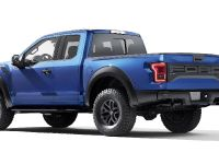 2017 Ford F-150 Raptor, 9 of 11