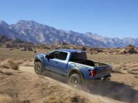 2017 Ford F-150 Raptor, 10 of 11