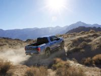 2017 Ford F-150 Raptor, 11 of 11