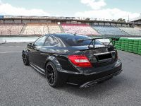 2017 Inden Design Mercedes-AMG C 63 Black Series , 11 of 16