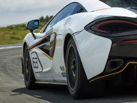 2017 McLaren 570S Sprint, 6 of 6