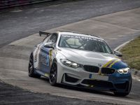 2018 Alpha-N Performance BMW M4, 15 of 17
