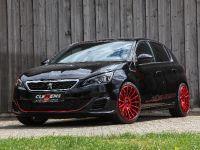 2018 CLEMENS Motorsport Peugeot 307 GTI , 4 of 16