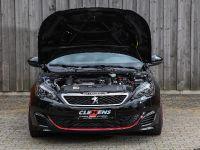2018 CLEMENS Motorsport Peugeot 307 GTI , 8 of 16