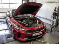 2018 DTE Performance Kia Stinger , 4 of 8
