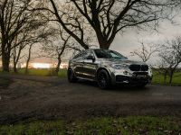 2018 fostla.de BMW X6 M50d F16, 7 of 16