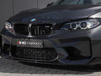 2018 Lightweight BMW M2 LW, 8 of 19