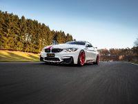 2018 MANHART BMW MH4 550, 4 of 12