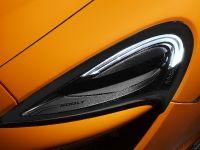 2018 McLaren 600LT , 17 of 17