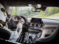 2018 Mercedes-AMG GT R, 14 of 14