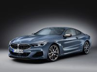 2019 BMW 850i xDrive Coupe, 2 of 8