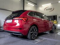 2019 DTE Systems Skoda Scala , 3 of 8
