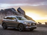 2019 Infiniti QX Crossover , 3 of 5