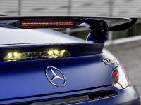 2019 Mercedes-AMG GT-R Roadster, 10 of 18