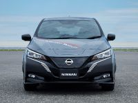 thumbnail image of 2019 Nissan EV Test Vehicle