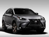 2020 Lexus NX Special Edition, 1 of 9