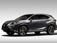 2020 Lexus NX Special Edition, 2 of 9