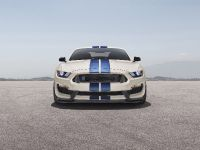thumbnail image of 2020 Shelby GR350R Heritage Edition