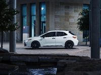 2020 Toyota Corolla Nightshade , 6 of 15