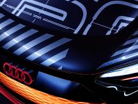 2021 Audi e-tron GT, 8 of 10