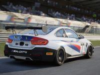 2021 BMW Motorsport SIM Racing, 7 of 13
