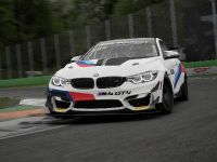 2021 BMW Motorsport SIM Racing, 9 of 13