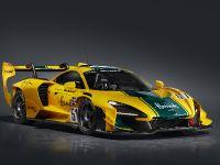 2021 McLaren Senna GTR, 27 of 41