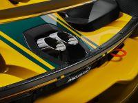 2021 McLaren Senna GTR, 33 of 41