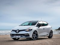 2021 Renault Clio 30 years, 15 of 19