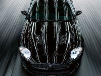 60 Years Of Jaguar XK, 9 of 19