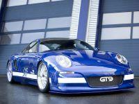 thumbnail image of 9ff Porsche GT9