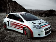 Abarth Grande Punto S 2000, 5 of 5
