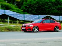 AC Schnitzer BMW 2-Series Coupe, 13 of 18