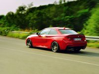 AC Schnitzer BMW 2-Series Coupe, 18 of 18