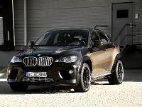 AC Schnitzer BMW X6 Falcon, 14 of 16