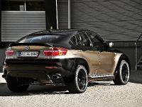 AC Schnitzer BMW X6 Falcon, 11 of 16