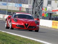 thumbnail image of Alfa Romeo 4C 2014 WTCC Safety Car