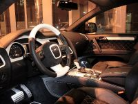 ANDERSON GERMANY Audi Q7, 9 of 10