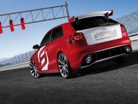 Audi A3 TDI Clubsport Quattro, 14 of 26