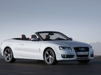 Audi A5 Cabriolet 2010, 15 of 53