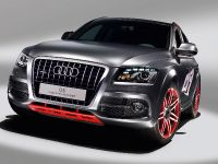 thumbnail image of Audi Q5 custom concept