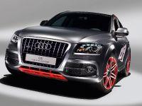 Audi Q5 custom concept, 2 of 18