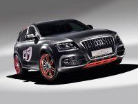 Audi Q5 custom concept, 3 of 18