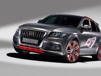 Audi Q5 custom concept, 4 of 18