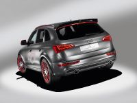 Audi Q5 custom concept, 7 of 18